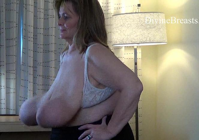 flap jack tits